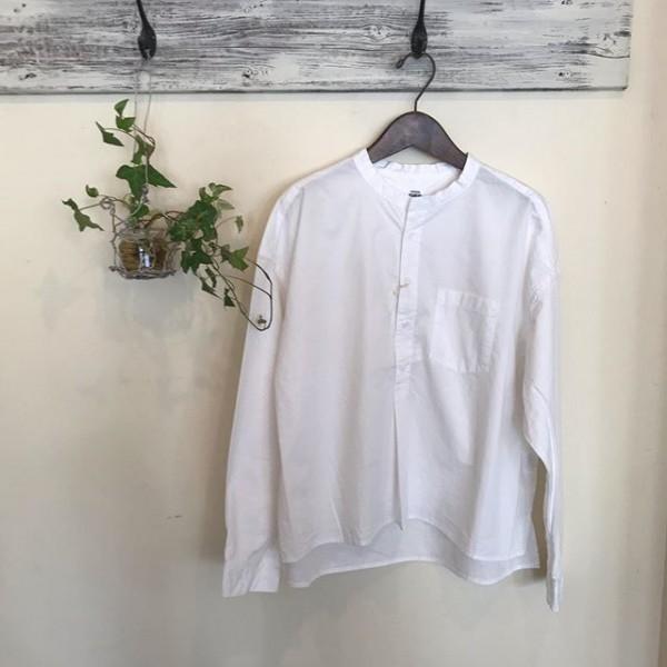 .白のプルシャツが入荷しております。..