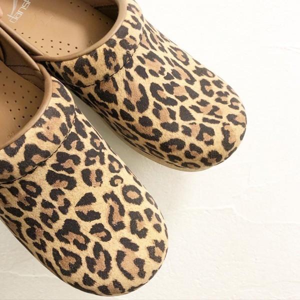 *leopard入荷しました。***